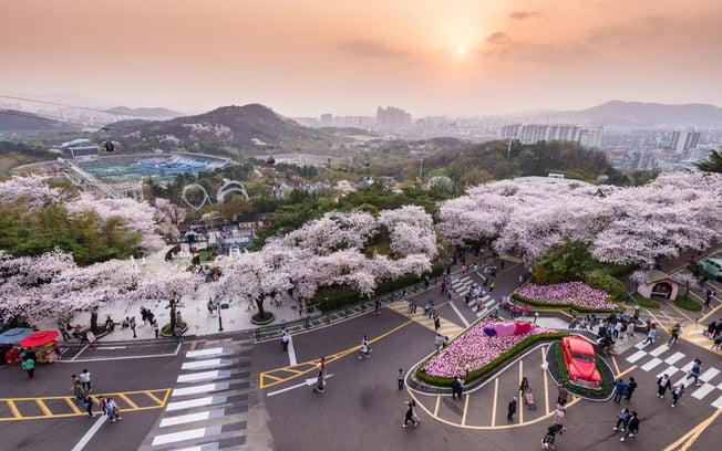 Daegu in South Korea