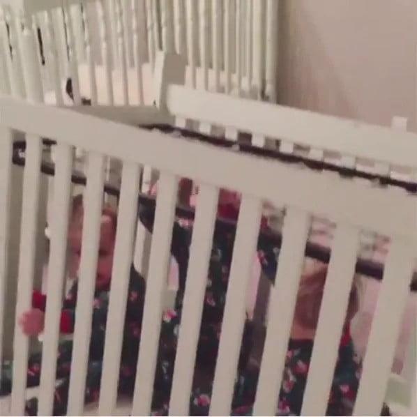 Cradle Cage