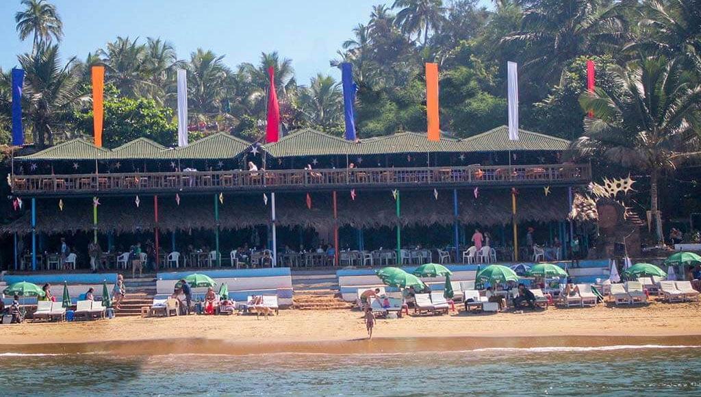 Curlies, Goa
