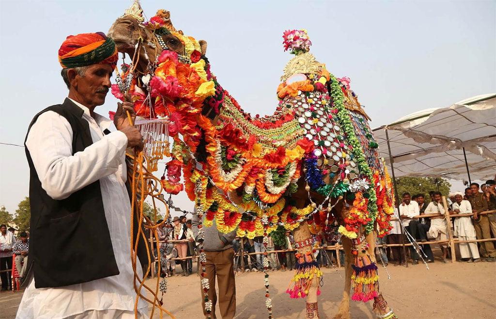 Nagaur Cattle Fair